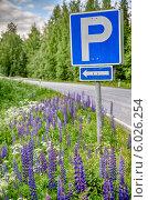 Знак парковки на живописном загородном шоссе с лесом и цветами (2014 год). Стоковое фото, фотограф Борис Смирин / Фотобанк Лори