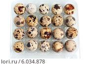Перепелиные яйца в контейнере. Стоковое фото, фотограф Александр Власик / Фотобанк Лори