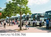Купить «Туристические автобусы около аэропорта в Анталии, Турция», эксклюзивное фото № 6036766, снято 16 июня 2014 г. (c) Володина Ольга / Фотобанк Лори