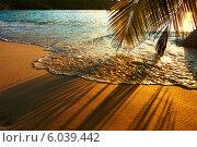 Купить «Красивый закат на пляже с тенью от пальм. Сейшельские острова», фото № 6039442, снято 17 апреля 2014 г. (c) Николай Охитин / Фотобанк Лори