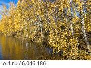 Купить «Осенний пейзаж с березами и водоемом», эксклюзивное фото № 6046186, снято 12 октября 2013 г. (c) Елена Коромыслова / Фотобанк Лори