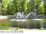 Купить «Фонтан в парке Дубки (Химки)», фото № 6054598, снято 18 мая 2014 г. (c) Александр Замараев / Фотобанк Лори