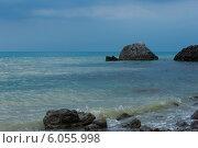 Крым, Судак. Стоковое фото, фотограф Наталья Есипова / Фотобанк Лори