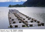 Купить «Рыбная ферма на озере Maninjau. Суматра. Индонезия», фото № 6081898, снято 24 декабря 2013 г. (c) Elena Odareeva / Фотобанк Лори