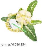 Купить «Диета с цветной капустой», фото № 6086154, снято 4 апреля 2014 г. (c) Ирина Денисова / Фотобанк Лори