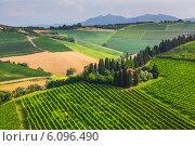 Купить «Сельский пейзаж с домами в провинции Тоскана, Италия», фото № 6096490, снято 25 июня 2014 г. (c) Олег Жуков / Фотобанк Лори
