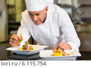 Купить «Concentrated male chef garnishing food in kitchen», фото № 6115754, снято 18 ноября 2013 г. (c) Wavebreak Media / Фотобанк Лори