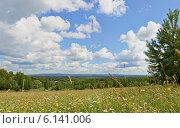 Летний пейзаж с полем и голубым небом. Стоковое фото, фотограф Владимир Аликин / Фотобанк Лори
