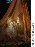 Купить «Девушка и юноша под пологом», фото № 6157214, снято 9 июня 2014 г. (c) Юрий Викулин / Фотобанк Лори