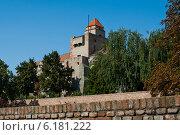 Замок в крепости Калемегдан, Белград, Сербия (2011 год). Стоковое фото, фотограф Петр Ерохин / Фотобанк Лори