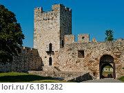 Башня крепости Калемегдан, Белград, Сербия (2011 год). Стоковое фото, фотограф Петр Ерохин / Фотобанк Лори