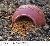 Горшок с деньгами. Стоковое фото, фотограф konstantin tatonkin / Фотобанк Лори