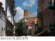 Купить «Вильнюс», фото № 6203974, снято 22 июля 2014 г. (c) Ямаш Андрей / Фотобанк Лори