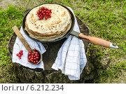 Блины со свежей красной смородиной на старой сковороде на фоне зеленой травы. Стоковое фото, фотограф Зинаида Зайко / Фотобанк Лори