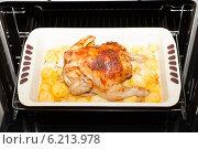 Сочная курица в духовке. Стоковое фото, фотограф Виктор Аксёнов / Фотобанк Лори