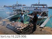 Купить «Два грека готовят свинину на решетке. Крит, Греция», эксклюзивное фото № 6229906, снято 18 июля 2014 г. (c) Алексей Гусев / Фотобанк Лори
