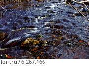 Горный ручей. Стоковое фото, фотограф Юрий Ермаков / Фотобанк Лори