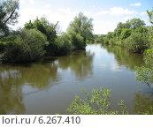 Река Протва весной (2011 год). Стоковое фото, фотограф Голов Евгений Юрьевич / Фотобанк Лори