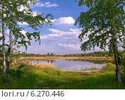 Берёзы у озера. Стоковое фото, фотограф Леонид Нуйкин / Фотобанк Лори