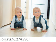 Купить «Baby twins crawling on the floor», фото № 6274786, снято 11 мая 2019 г. (c) BE&W Photo / Фотобанк Лори