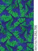 Бесшовный фон с попугаями ара. Стоковая иллюстрация, иллюстратор Irene Shumay / Фотобанк Лори