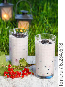 Купить «Blueberry and redcurrant smoothie on wooden tray. Garden party, grass in the background», фото № 6284618, снято 22 апреля 2019 г. (c) BE&W Photo / Фотобанк Лори
