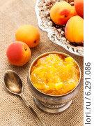 Купить «Bowl of apricot jam and ripe apricots in the background. Healthy food», фото № 6291086, снято 26 апреля 2019 г. (c) BE&W Photo / Фотобанк Лори