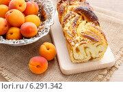 Купить «Apricot cake. Summerr party dessert», фото № 6291342, снято 29 февраля 2020 г. (c) BE&W Photo / Фотобанк Лори