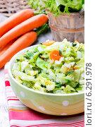 Купить «Fresh salad in green dotted bowl», фото № 6291978, снято 28 мая 2020 г. (c) BE&W Photo / Фотобанк Лори