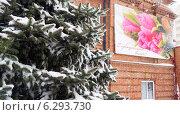Поздний снег (2014 год). Редакционное фото, фотограф Нурлан Султанов / Фотобанк Лори