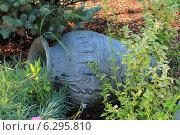 Глиняный кувшин лежит в саду (2014 год). Редакционное фото, фотограф Мичурина Ирина / Фотобанк Лори