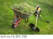 Купить «Тачка со скошенной травой и триммер», фото № 6301150, снято 14 августа 2014 г. (c) Александр Романов / Фотобанк Лори
