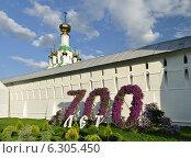 Купить «700 лет Толгскому монастырю», фото № 6305450, снято 20 августа 2014 г. (c) Голованов Сергей / Фотобанк Лори