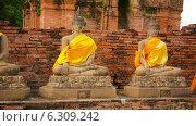 Купить «Статуи Будды, Таиланд», видеоролик № 6309242, снято 1 мая 2014 г. (c) pzAxe / Фотобанк Лори