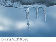 Сосульки на фоне неба с падающими каплями воды. Стоковое фото, фотограф Иван Рочев / Фотобанк Лори