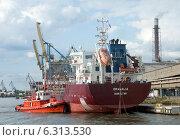 Купить «Погрузочный терминал в портовой гавани», эксклюзивное фото № 6313530, снято 23 августа 2014 г. (c) Svet / Фотобанк Лори