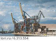 Купить «Погрузочный терминал в портовой гавани, Балтика, Гданьск», эксклюзивное фото № 6313554, снято 23 августа 2014 г. (c) Svet / Фотобанк Лори