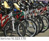 Множество велосипедов (2014 год). Редакционное фото, фотограф Самойлова Екатерина / Фотобанк Лори