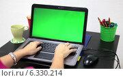 Купить «Женщина печатает на клавиатуре ноутбука», видеоролик № 6330214, снято 27 августа 2014 г. (c) Кекяляйнен Андрей / Фотобанк Лори