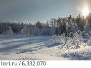 Купить «Зимний солнечный пейзаж в январе на лесной поляне в Московской области», фото № 6332070, снято 26 января 2014 г. (c) Валерий Боярский / Фотобанк Лори