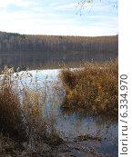 Лес поздней осенью отражается в глади озера. Пейзаж. Стоковое фото, фотограф BoLinar / Фотобанк Лори