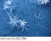 Купить «Снежинки крупно, макро в холодных тонах», фото № 6335786, снято 26 января 2014 г. (c) Горшков Игорь / Фотобанк Лори