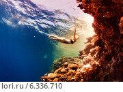 Купить «Девушка и кораллы в море», фото № 6336710, снято 28 октября 2013 г. (c) Владимир Сурков / Фотобанк Лори