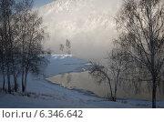 Островок в зимний день. Стоковое фото, фотограф Фомина Марина / Фотобанк Лори