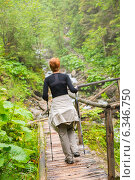 Hiker with hiking poles looking walking over wooden bridge in a forest, фото № 6346750, снято 23 июля 2014 г. (c) Andrejs Pidjass / Фотобанк Лори