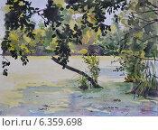 Купить «Заросший пруд. Фотография акварельного рисунка», иллюстрация № 6359698 (c) Emmerdeur / Фотобанк Лори