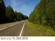 Таежная дорога. Стоковое фото, фотограф Иван Корчагин / Фотобанк Лори