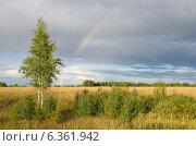 Природа Селигера. Летний пейзаж с радугой. Стоковое фото, фотограф Елена Коромыслова / Фотобанк Лори
