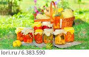 Купить «Консервы овощные на натуральном природном фоне», фото № 6383590, снято 17 сентября 2010 г. (c) Iordache Magdalena / Фотобанк Лори