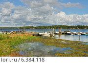 Купить «Пейзаж с синем озером, заболоченном у берега», фото № 6384118, снято 22 августа 2014 г. (c) Валерия Попова / Фотобанк Лори
